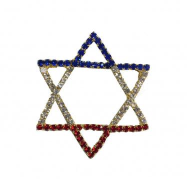 Jewish Star Pin