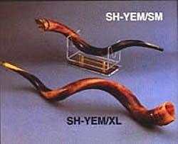 Large Yemenite Triple Twist Shofar